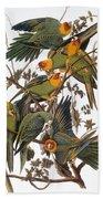 Audubon: Parakeet Bath Towel
