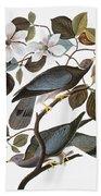 Audubon: Pigeon Bath Towel