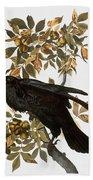 Audubon: Raven Bath Towel