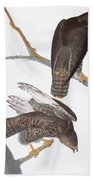 Audubon: Red-tailed Hawk Bath Towel