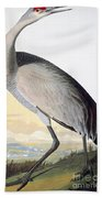 Audubon Sandhill Crane Bath Towel