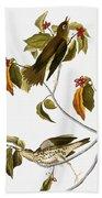 Audubon: Thrush Hand Towel