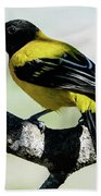 Audubon's Oriole Back Wings Bath Towel