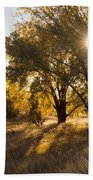 Autum Sunburst Bath Towel