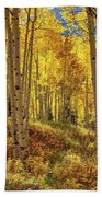Autumn Aspen Forest Aspen Colorado Panorama Hand Towel