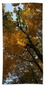 Autumn Canopy Bath Towel
