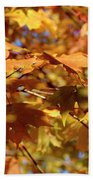 Autumn Colors 3  Hand Towel