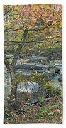 Autumn Comes To The Unami Creek Hand Towel