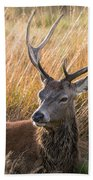 Autumn Deer Bath Towel
