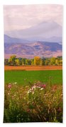 Autumn Flowers At Harvest Time Hand Towel