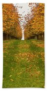 Autumn Foliage Bath Towel
