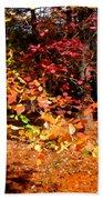 Autumn Hues Bath Towel