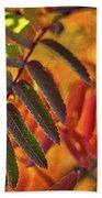 Autumn Leaves - Patagonia Bath Towel