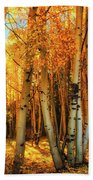 Autumn Light Bath Towel