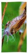 Autumn Milkweed 7 Hand Towel