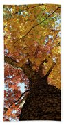 Autumn Rainbow Bath Towel