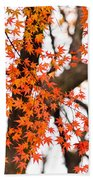 Autumn Red Leaves On A Tree   Bath Towel