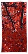 Autumn Red Trees 2015 Bath Towel