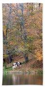 Autumn Reflections Cow Farm Bath Towel