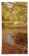 Autumn Serenity Bath Towel