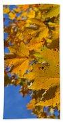 Autumn Sky Bath Sheet