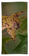 Autumn Spotted Bath Towel