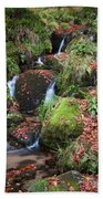 Autumn Stream Hand Towel