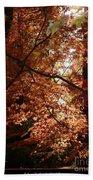 Autumn Sunshine Poster Bath Towel