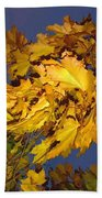 Autumn Winds Bath Towel
