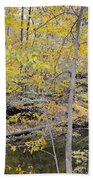 Autumn Woods 2 Bath Towel