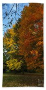 Autumn's Artwork Bath Towel
