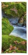 Autumn's Creek 2 Hand Towel