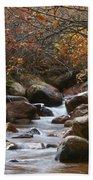 Autumns Flow Bath Towel