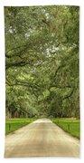 Avenue Of The Oaks Hand Towel