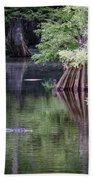 Babcock Wilderness Ranch - Peaceful Alligator Lake Bath Towel