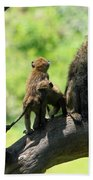 Baboon Family Hand Towel