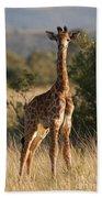 Baby Giraffe Bath Towel