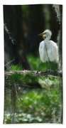 Baby Great Egrets With Nest Bath Towel