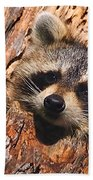 Baby Raccoon Bath Towel