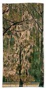 Backlit Moss-covered Trees Caddo Lake Texas Bath Towel
