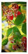 Backyard Garden Series - Sunlight On Raspberries Bath Towel