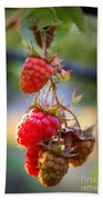 Backyard Garden Series - The Freshest Raspberries Hand Towel
