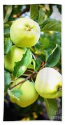 Backyard Garden Series- Golden Delicious Apples Bath Towel