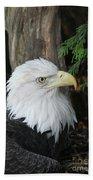 Bald Eagle #8 Bath Towel