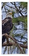 Bald Eagle By H H Photography Of Florida Bath Towel