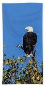 Bald Eagle In The Tree Bath Towel