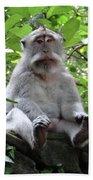 Balinese Serious Monkey Bath Towel