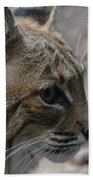 Bama Bobcat Bath Towel