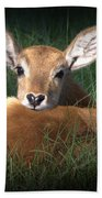 Bambi Bath Towel