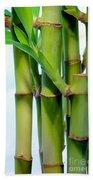 Bamboo And Sky Hand Towel